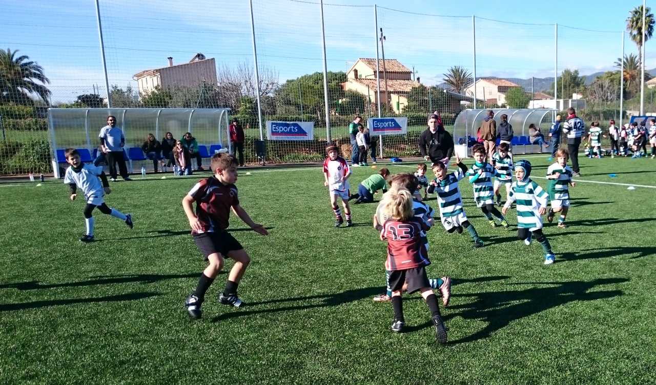 Bocs Rugby. Categoria Sub 8.